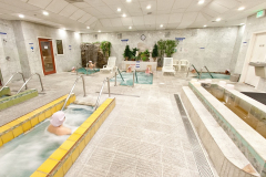 OlympusTacoma_PoolArea_with_cust_small
